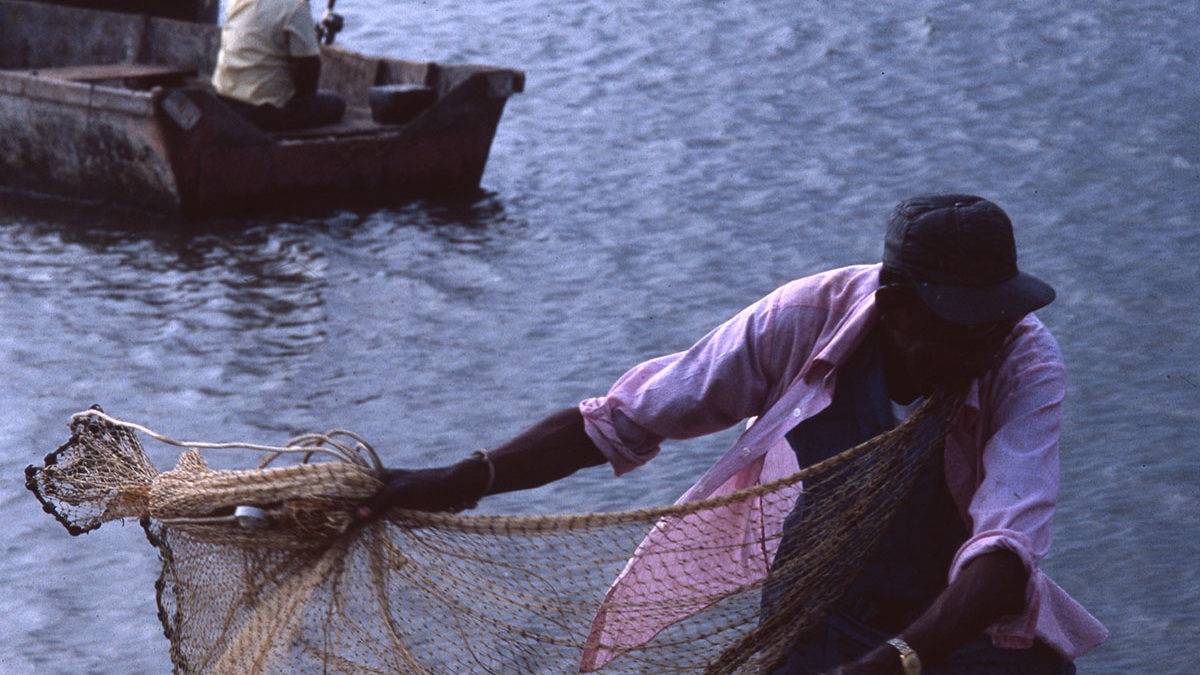 Image of man throwing net to sea from boat